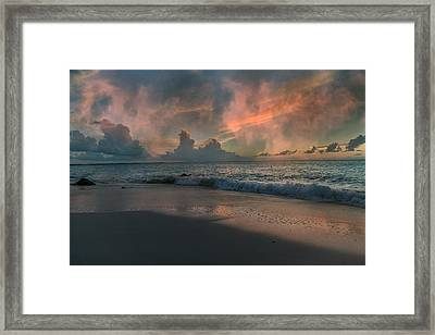 Wilderness Ocean Framed Print by Betsy C Knapp
