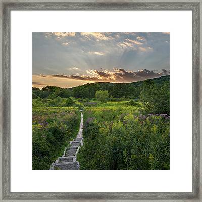 Wildflower Sunset 2016 Square Framed Print by Bill Wakeley