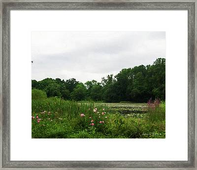 Wildflowers At Farrington Lake Framed Print by Louise Reeves