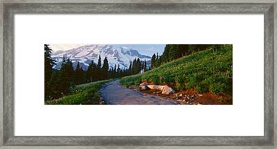Wildflowers At Sunset, Mount Rainier Framed Print by Panoramic Images