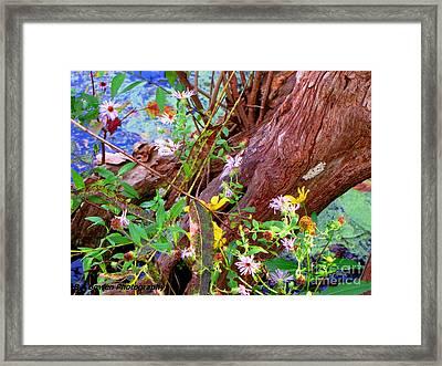 Wildflowers On A Cypress Knee Framed Print by Barbara Bowen