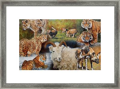 Wildlife Collage Framed Print by David Stribbling