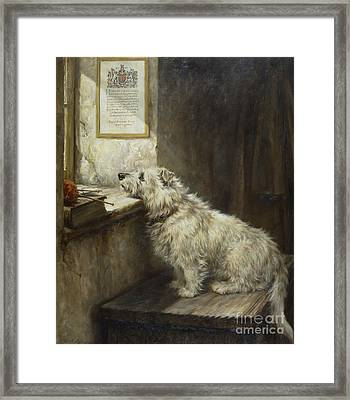 Will He Come Back Framed Print by Robert Morley