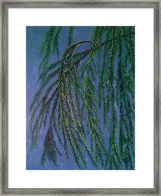 Wind In The Willow Framed Print by Joann Renner