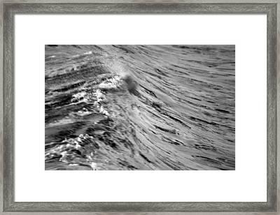 Wind Swept Framed Print by Brad Scott