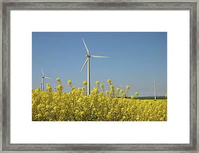 Wind Turbines Across A Field Of Flowering Oilseed Rape (brassica Napus) Framed Print by Maria Jauregui Ponte