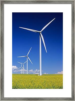 Wind Turbines In Canola Field, Near St Framed Print by Dave Reede