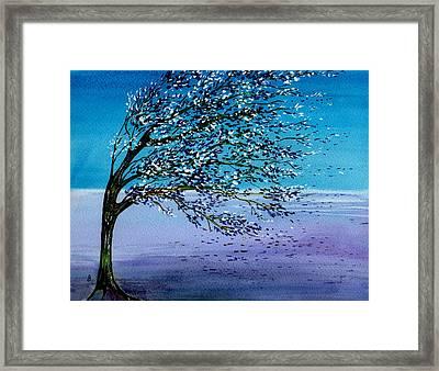 Windblown Framed Print by Brenda Owen
