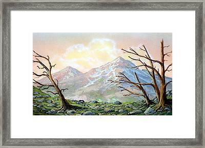 Windblown Framed Print by Frank Wilson