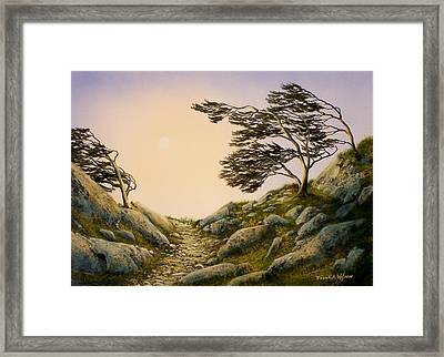 Windblown Warriors Framed Print by Frank Wilson