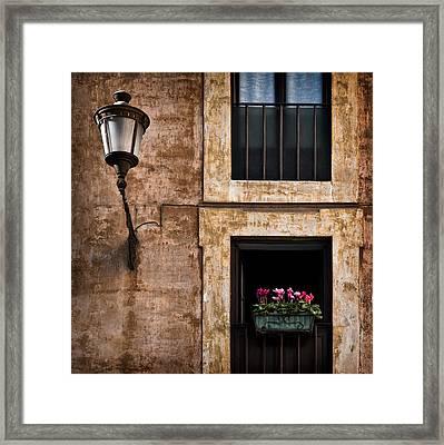 Window Box Framed Print by Dave Bowman