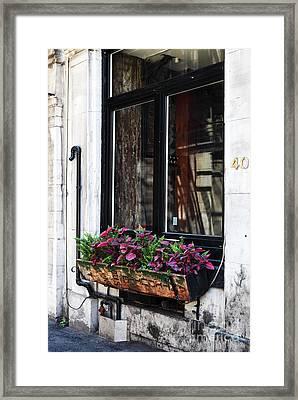 Window Flowers Framed Print by John Rizzuto