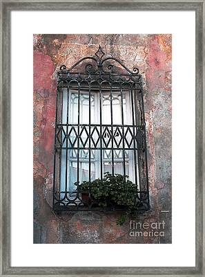 Window In Tuscany Framed Print by Tom Prendergast