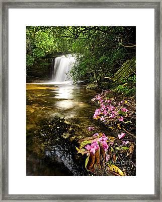 Window Into Heaven - Panthertown North Carolina Framed Print by Matt Tilghman