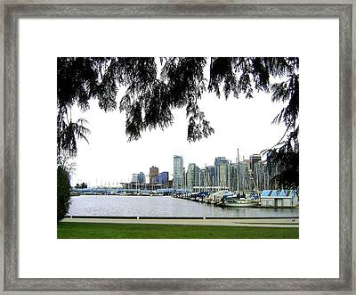 Window To The Harbor Framed Print by Will Borden
