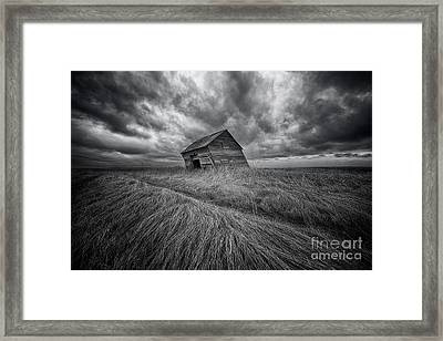 Windswept Framed Print by Ian McGregor