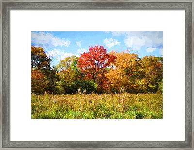 Windy Autumn Day In New England Framed Print by Lilia D