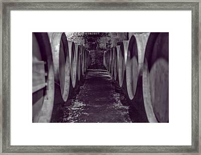 Wine Barrel Alley Framed Print by Georgia Fowler