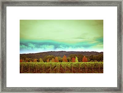 Wine In Time Framed Print by Ryan Weddle
