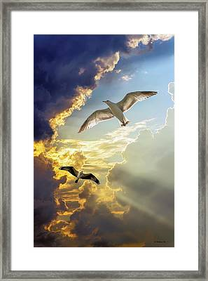 Wings Against The Storm Framed Print by Brian Wallace