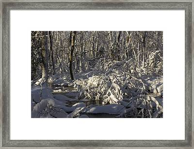 Winter At Borden Brook Framed Print by Andrew Pacheco