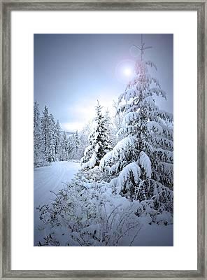 Winter At Carmi Mountain Framed Print by Tara Turner