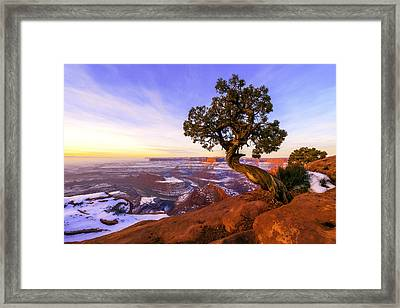 Winter At Dead Horse Framed Print by Chad Dutson