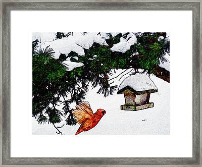 Winter Birdfeeder Framed Print by Anthony Caruso