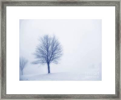 Winter Blues Framed Print by Randy Steele