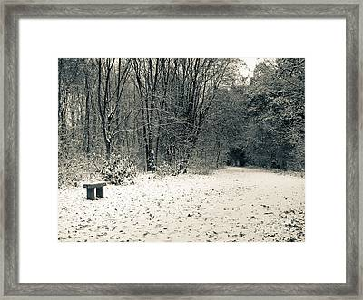 Winter Bridleway Framed Print by Andy Smy