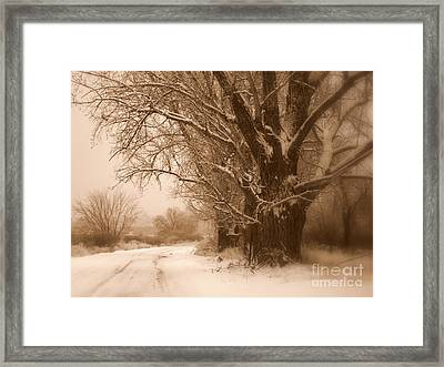 Winter Dream Framed Print by Carol Groenen
