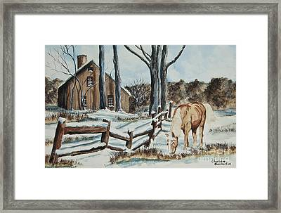 Winter Grazing  Framed Print by Charlotte Blanchard