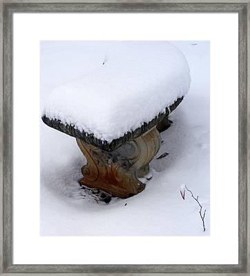 Winter Hope Framed Print by Elena Tudor