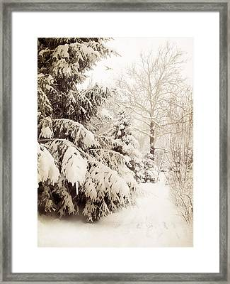 Winter In Sepia Framed Print by Jessica Jenney