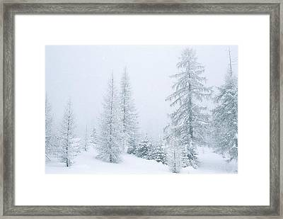 Winter Landscape Framed Print by Unknown