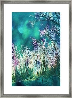 Winter Lights Framed Print by Kathy Bassett