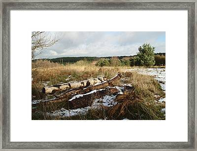 Winter Logs On Hednesford Hills Framed Print by Adrian Wale