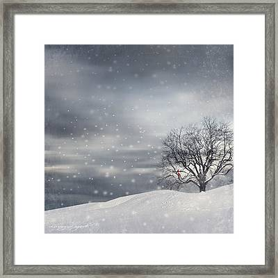 Winter Framed Print by Lourry Legarde