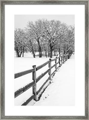 Winter Framed Print by Mike Irwin