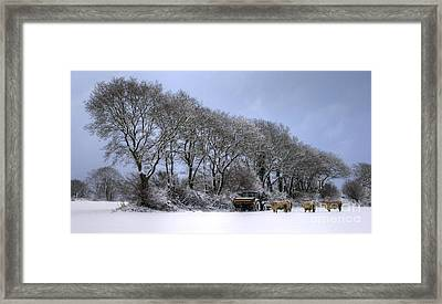 Winter Morning On The Farm Framed Print by Sophie De Roumanie