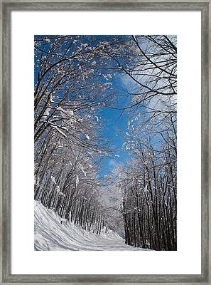 Winter Road Framed Print by Evgeni Dinev