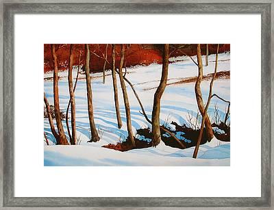 Winter Shadows Framed Print by Dale Ziegler