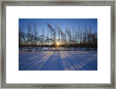Winter Shadows Framed Print by Mircea Costina Photography