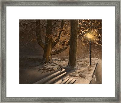 Winter Silence Framed Print by Veronica Minozzi