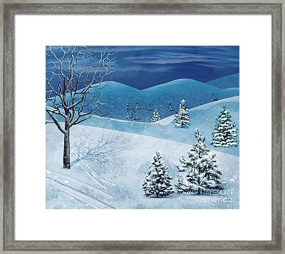 Winter Solstice Framed Print by Bedros Awak