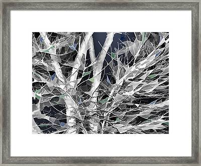 Winter Song Framed Print by Wendy J St Christopher