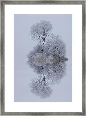 Winter Stillness Framed Print by Norbert Maier
