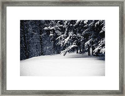 Winter Storm Framed Print by Maggie Terlecki