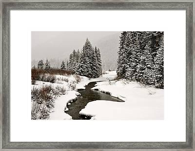 Winter Stream Framed Print by Frank Remar