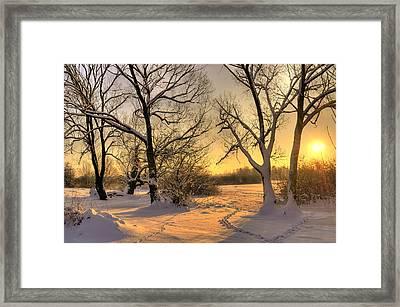 Winter Sunset Framed Print by Jaroslaw Grudzinski
